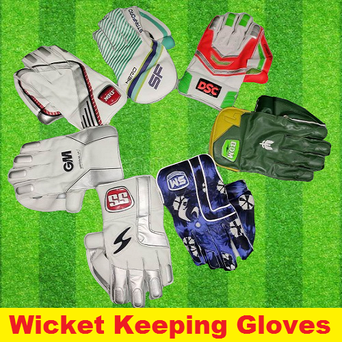 Wicket Keeping Gloves - Online Stockist